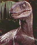 Clever girl: One of the Velociraptors from Jurassic Park.